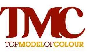 10473085-top-model-of-colour